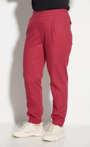 Trousers  #69 krasn